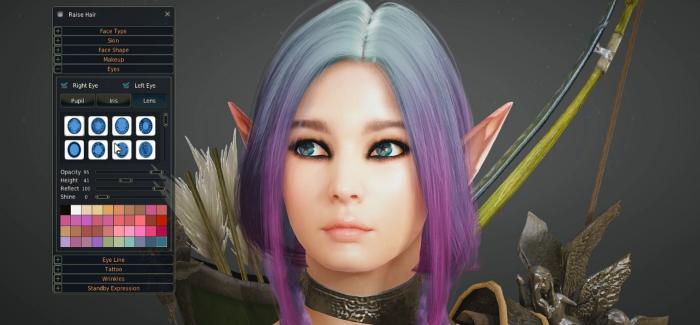 So Let's Investigate… Black Desert Character Creator